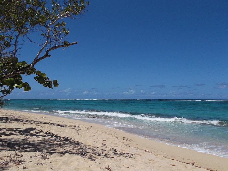 Playa Manguana