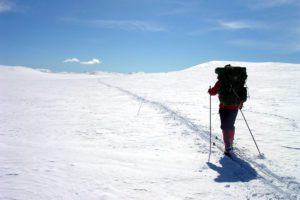 Man on skis in a snowy landscape