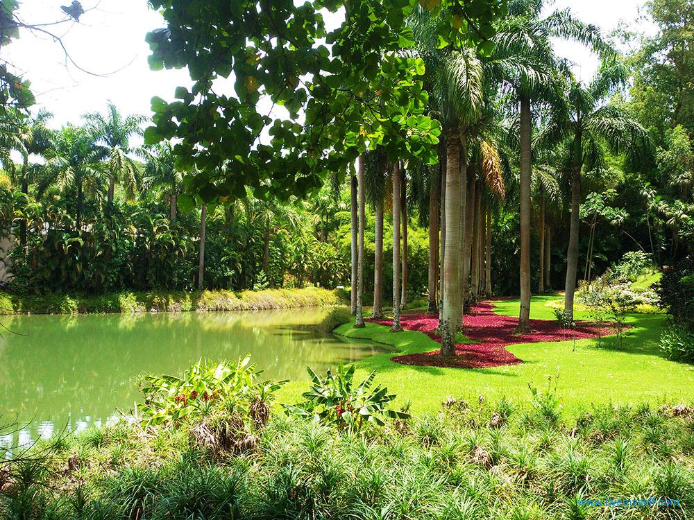 INHOTIM Botanic Garden and Gallery