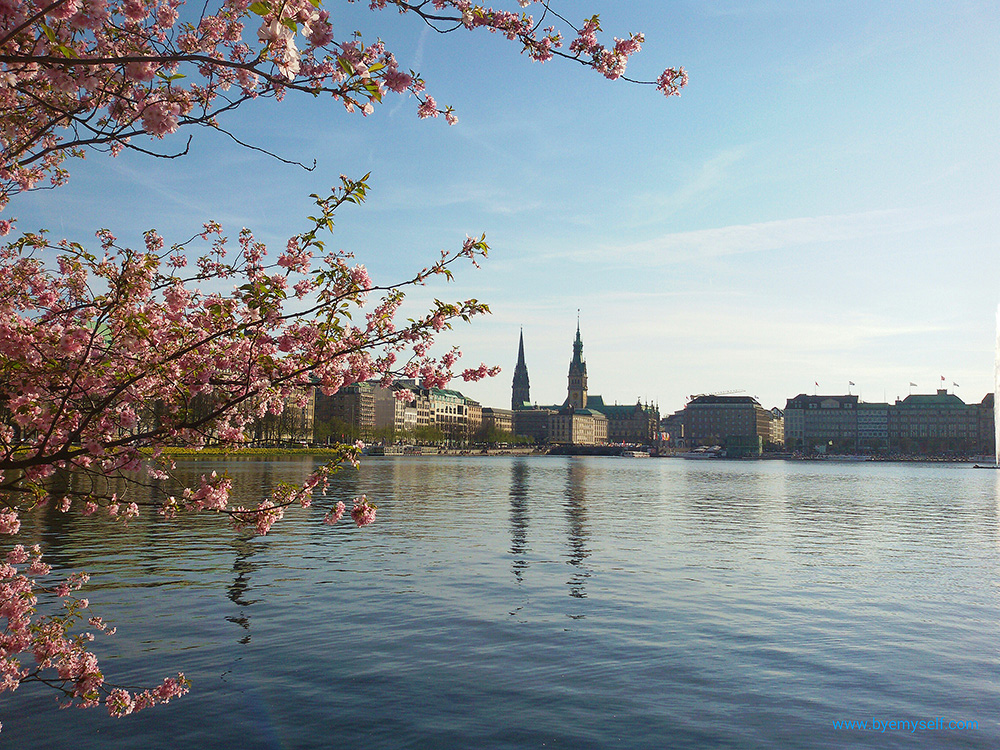 Alster Lake in the Center of Hamburg