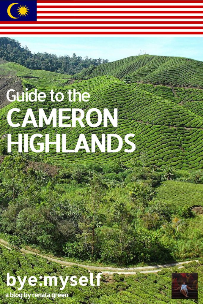 Pinnable Picture for the Post on Guide to the CAMERON HIGHLANDS, Malaysia's Fruit Bowl