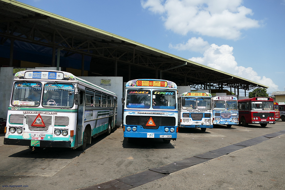 Buses in Sri Lanka in various colors and shapes.