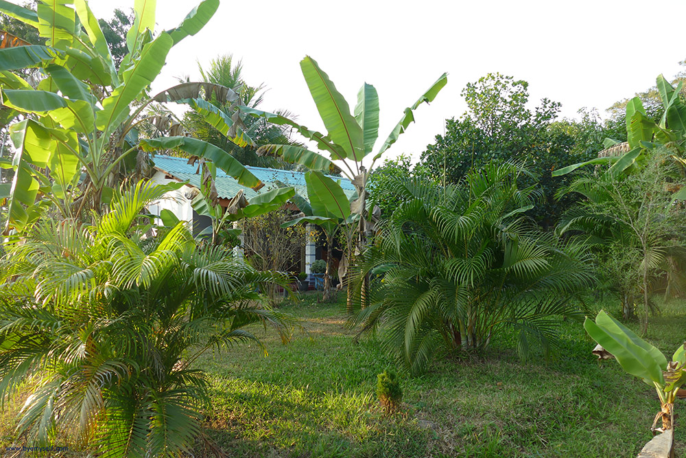 The guest house and the yard in Sigiriya