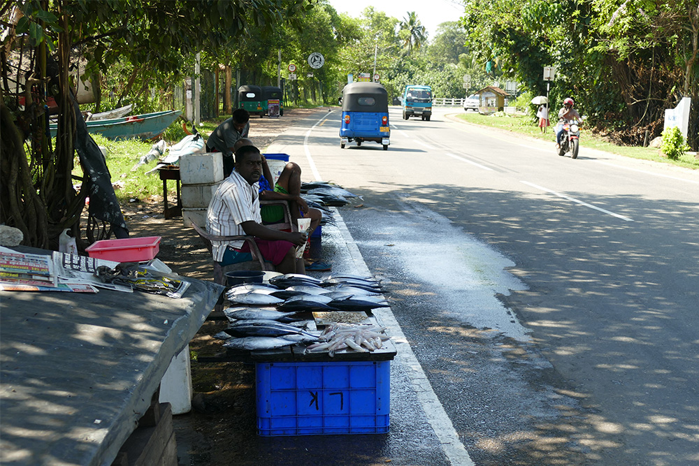 Road from Mirissa to Galle
