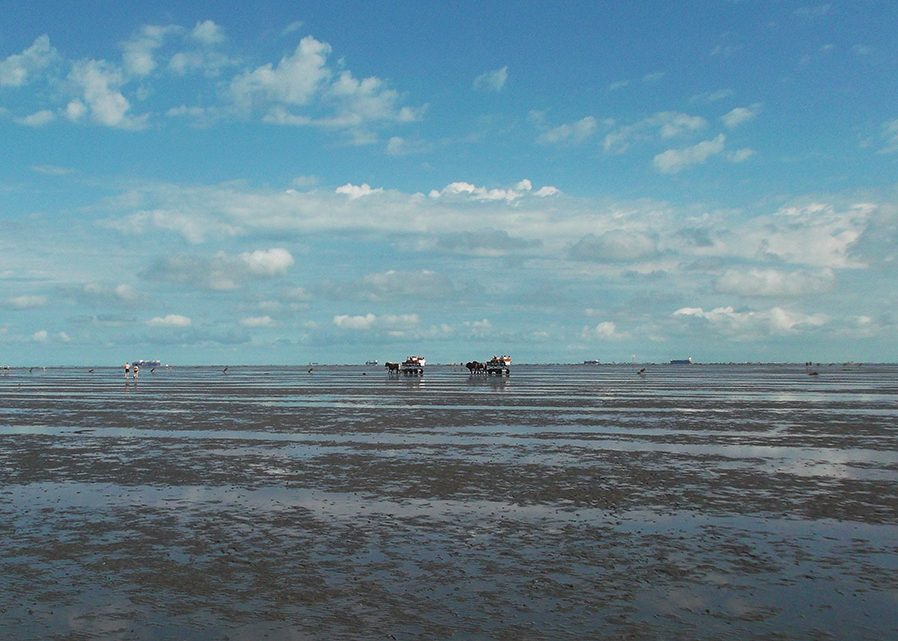 Taking a carriage or walking on water from Cuxhaven