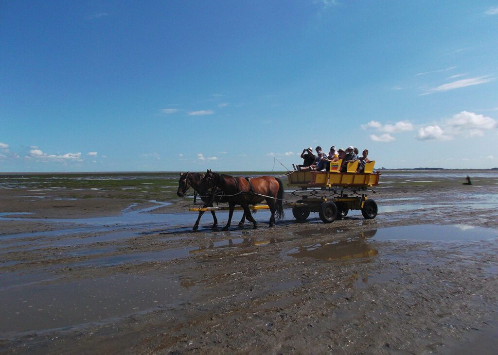 People on a horse carriage instead of walking on water from Cuxhaven
