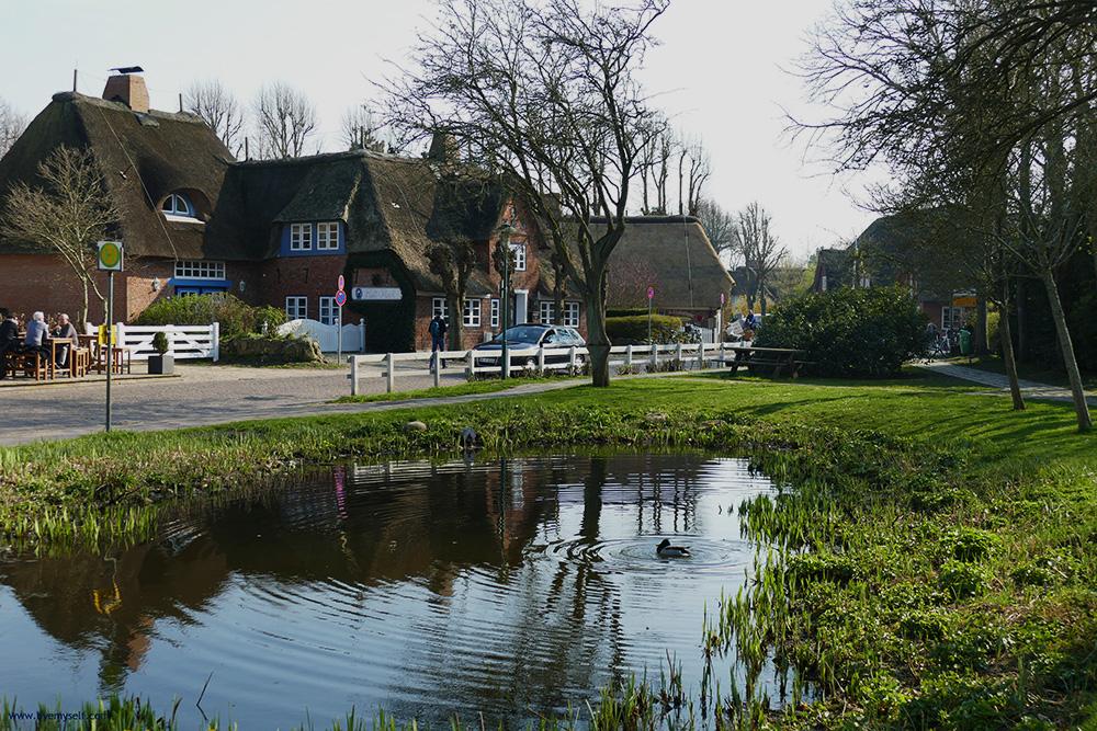 Frisian Houses around a Pond in Nieblum on Foehr