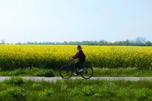Renata Green riding a bike on the island of Fehmarn
