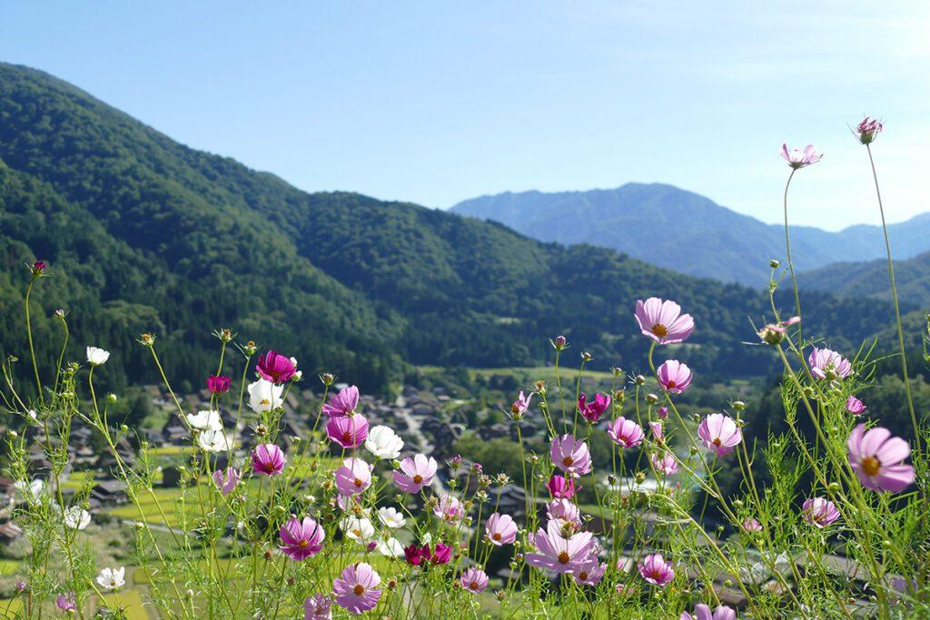 View of Shirakawago village