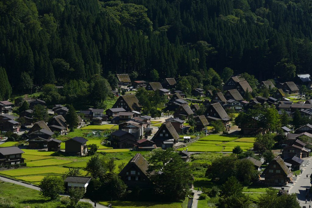 The unobstructed view of Shirakawago village and the iconic gassho-zukuri farmhouses.
