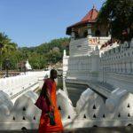 Monk walking in Kandy