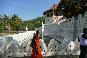Monk walking in Kandy