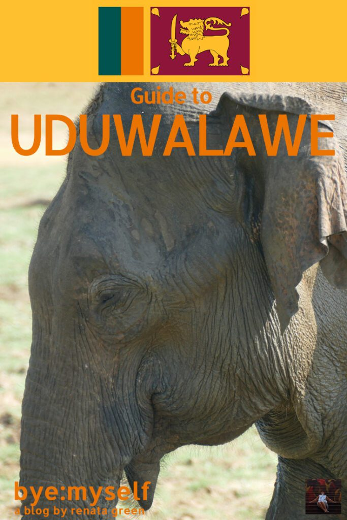 Pinnable Picture for the post on Guide to UDAWALAWE - on a Peaceful Safari